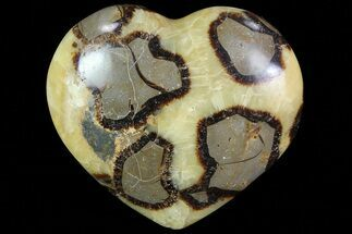 "3"" Polished Septarian Heart For Sale, #82037"