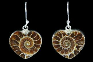 Buy Fossil Ammonite Earrings - Sterling Silver - #82261