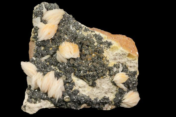 "2.6"" Cerussite Crystals with Bladed Barite on Galena - Morocco"