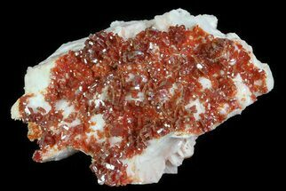 "2.3"" Ruby Red Vanadinite Crystals on Pink Barite - Morocco For Sale, #82370"
