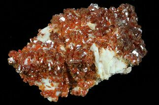 "Buy 2.2"" Ruby Red Vanadinite Crystals on Pink Barite - Morocco - #82378"