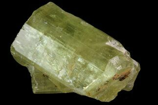 "Buy Bargain .7"" Lustrous Yellow Apatite Crystal - Morocco - #82576"