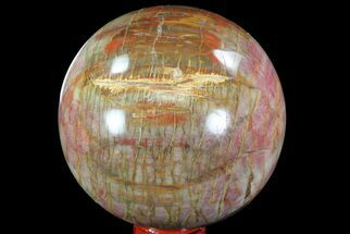 "3.5"" Colorful Petrified Wood Sphere - Madagascar For Sale, #82736"