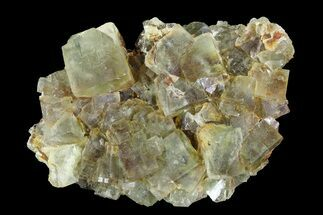 "Buy 2.8"" Yellow/Green Cubic Fluorite Crystal Cluster - Morocco  - #82804"