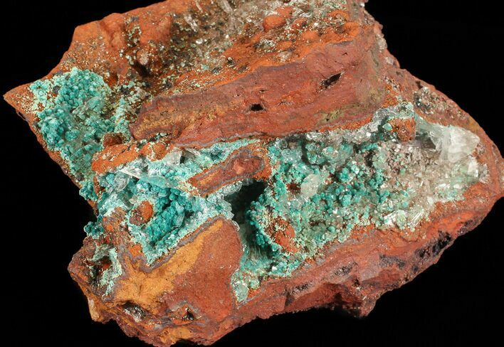 "3.3"" Fibrous Rosasite and Selenite Association - Mexico"
