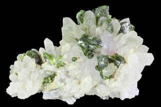 "Buy 2.5"" Lustrous, Epidote Crystal Cluster with Quartz - Morocco - #84331"