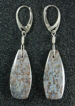 Powder Blue, Agatized Dinosaur Bone (Gembone) Earrings  For Sale, #84749
