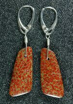 Red/Orange, Agatized Dinosaur Bone (Gembone) Earrings  For Sale, #84754