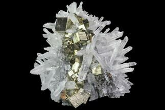 "Buy 2.4"" Quartz Crystal Cluster With Gleaming Pyrite - Peru - #84790"