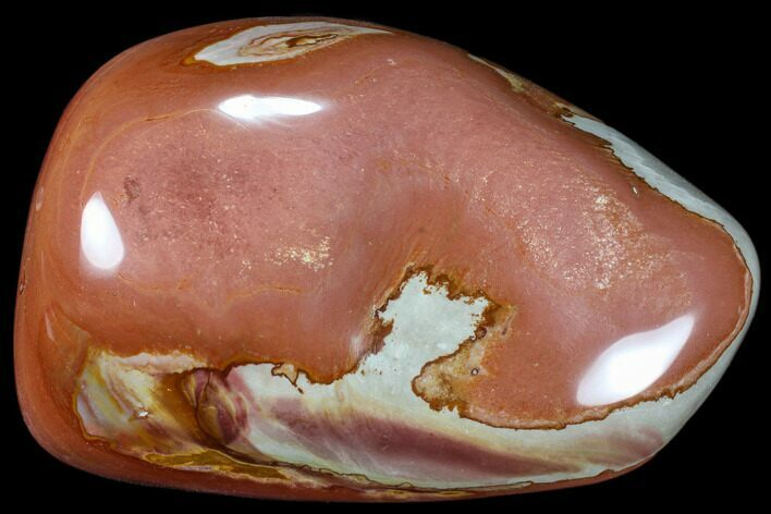 "7.1"" Polished Polychrome Jasper - Madagascar"