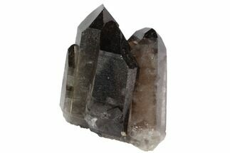"Buy 2.3"" Dark Smoky Quartz Crystal Cluster - Brazil - #84829"