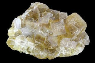 Fluorite - Fossils For Sale - #84303