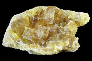 "3.5"" Lustrous Yellow Cubic Fluorite Crystal Cluster - Morocco For Sale, #84305"