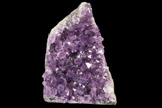 "4.8"" Beautiful Amethyst Cut Base Cluster - Uruguay For Sale, #87437"