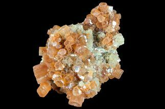 Aragonite - Fossils For Sale - #87756
