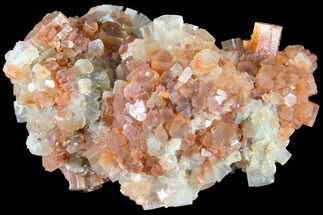 Aragonite - Fossils For Sale - #87771