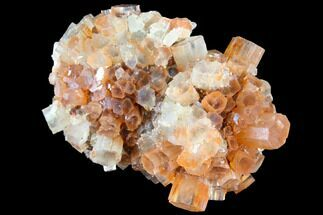 "2.75"" Aragonite Twinned Crystal Cluster - Morocco For Sale, #87779"