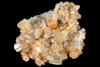 Aragonite - Fossils For Sale - #87783