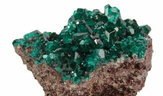 Dioptase - Fossils For Sale - #78699