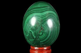 "Stunning 2.15"" Polished Malachite Egg - Congo For Sale, #89651"
