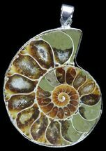 Buy Fossil Ammonite Pendant - 110 Million Years Old - #89842