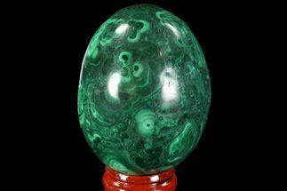 "Stunning 2.3"" Polished Malachite Egg - Congo For Sale, #89669"