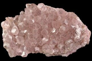 Cobaltoan Calcite - Fossils For Sale - #90309