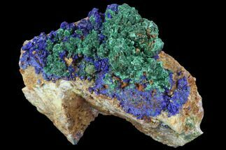 "Buy 2.8"" Sparkly Malachite with Azurite Crystal Specimen - Morocco - #90709"