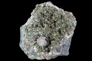 "4.1"" Chalcopyrite With Calcite - Pea Ridge Mine, Missouri For Sale, #90980"