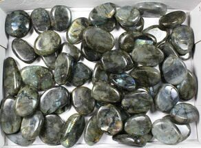 Labradorite - Fossils For Sale - #90654