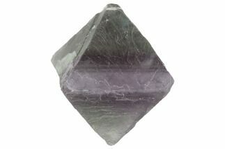 "1.72"" Fluorite Octahedron - Purple/Green Banded For Sale, #90923"