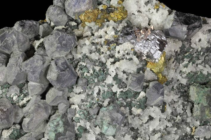 "10.2"" Galena, Chalcopyrite, Barite and Quartz Association - Morocco"