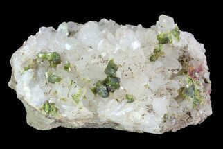 "Buy 1.8"" Lustrous Epidote On Quartz Crystals - Morocco - #91198"