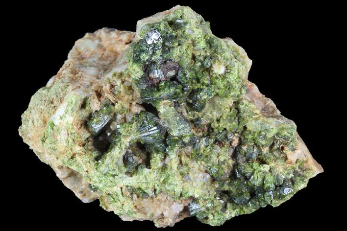 "2.3"" Green Epidote Crystal Cluster - Morocco"