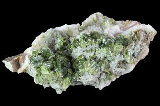 "3.1"" Green Epidote, Quartz and Byssolite Association - Morocco For Sale, #91211"