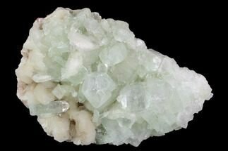 "4.6"" Zoned Apophyllite Crystals With Stilbite - India For Sale, #91322"