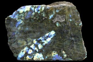 "10.1"" Wide, Single Side Polished Labradorite - Madagascar For Sale, #92063"