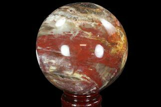 "Buy 3.6"" Colorful Petrified Wood Sphere - Madagascar - #92401"