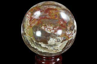"3.3"" Colorful Petrified Wood Sphere - Madagascar For Sale, #92396"