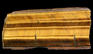 "Buy 5.5"" Polished Tigers Eye Slab - Africa - #92659"