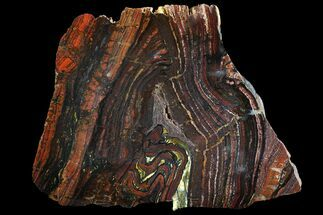 Tiger Iron Stromatolite - Fossils For Sale - #92970