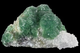 "Buy 4"" Botryoidal Green Fluorite Crystal Cluster - China - #93025"