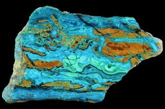 Chrysocolla & Malachite - Fossils For Sale - #93504