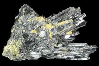 "Buy 4.1"" Metallic Stibnite Crystal Cluster - China - #93679"