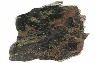 "Buy 2.8"" Polished Apache Gold (Chalcopyrite) Slab - Arizona - #93799"