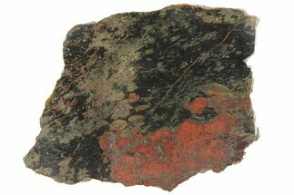"3.1"" Polished Apache Gold (Chalcopyrite) Slab - Arizona For Sale, #93800"