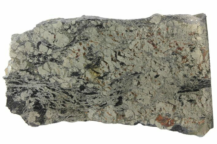 "3.25"" Polished Apache Gold (Chalcopyrite) Slab - Arizona"