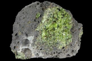"Buy 2.7"" Green Peridot Crystals in Basalt - Arizona - #93958"