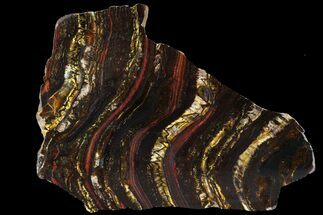 "Buy 6.8"" Polished Tiger Iron Stromatolite - (2.7 Billion Years) - #95896"