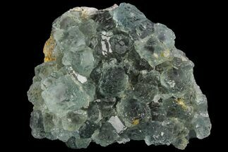 Fluorite  - Fossils For Sale - #96045